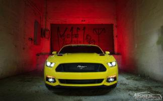 Mustang/GT500/GT350 Oil Separators